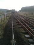 The rodding run looking very neat and tidy after Iain had trimmed back the turf along the fence line.  Photo I. Davis
