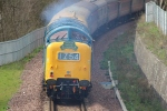 With a typical blue haze D9009 works away at the rear of the train.