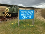 With the daffodils out showing it is spring, even if the the weather is still working to its winter schedule at Whitrope.